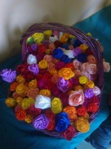 Rose di Villa Erbosa
